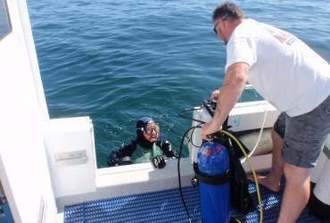 diving-v1